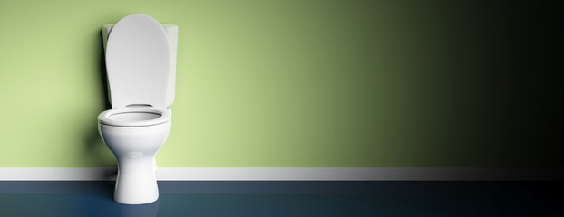 White toilet bowl on green painted wall background, banner, copy space. 3d illustration