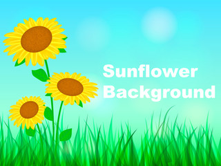 Three sunflowers grow in the field. Space for text. Vector illustration
