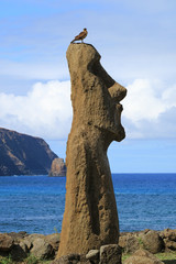Bird perching on Moai's head with Pacific ocean on the background, Ahu Tongariki, Easter Island, Chile, South America