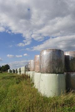 Heuballen in Folie in langer Reihe gestapelt auf Wiese im Sommer bei blauem Himmel