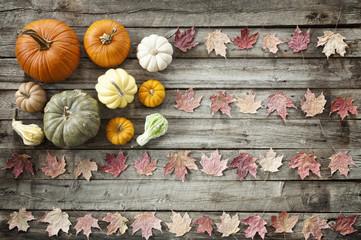 Autumn Pumpkins Flag Concept