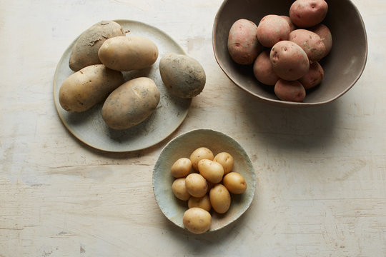 Collection of different kind or families of patatoes in ceramic bowls and pl