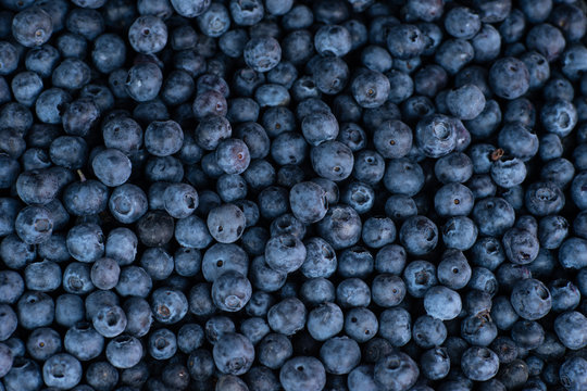 Blueberries on a market