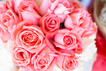 Pink roses in a bouquet.