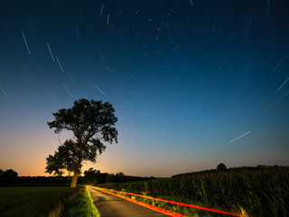 Star trails. Night landscape with a north hemisphere and stars. Vortex Night Exposure. The night glowing country road illuminated by the car winds around the big tree and leaves in a distance