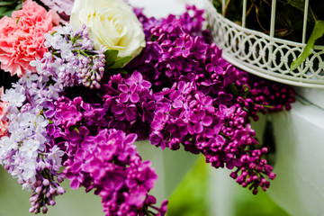 Flowers from purple lilacs