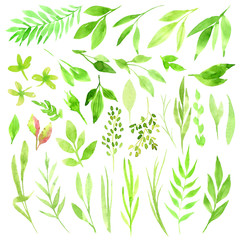 Botanical clipart. Set of Green leaves, herbs and branches. Floral Design elements. Perfect for wedding invitations, greeting cards, blogs, posters and more. Watercolor illustrations.