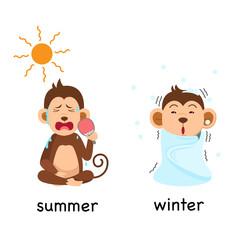 Opposite summer and winter vector illustration