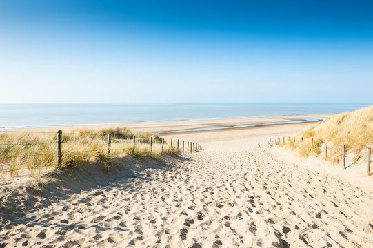 Sandy dunes on the sea coast, Netherlands