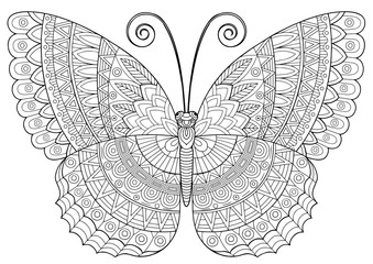 Back and white image of a butterfly on white background. Coloring-antistress for adults and children, for recreation and creativity. Hand drawn butterfly zentangle style for t-shirt design or tattoo.