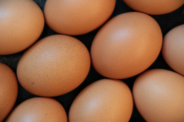 Many eggs resting on counter top full frame