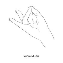 Rudra Mudra / Gesture of Solar Plexus. Vector.