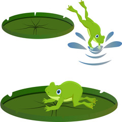 set of frog on lily leaf resting different vector