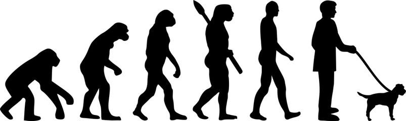 Border Terrier evolution