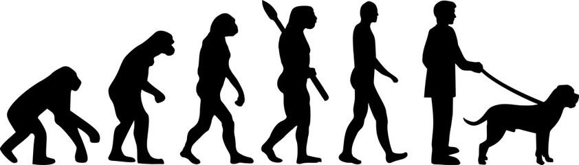 Cane Corso evolution