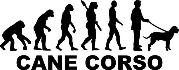 Cane Corso evolution word