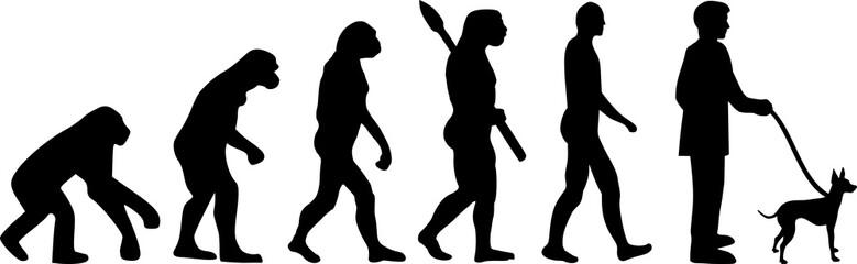 English toy terrier evolution