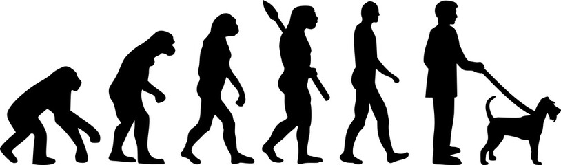 Irish Terrier evolution