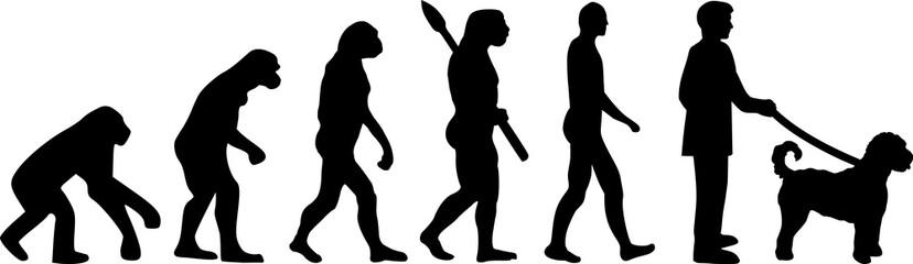 Labradoodle evolution