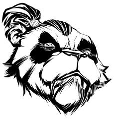 Panda on White / Hand drawn illustration of proud panda warrior.