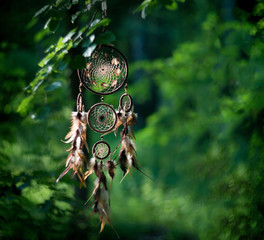 Dreamcatcher, american native amulet in forest. Shaman
