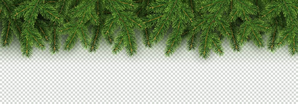 Christmas, New Year, Winter border with realistic branches of Christmas tree