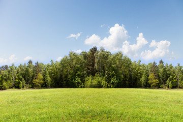 Meadow, forest and sky.