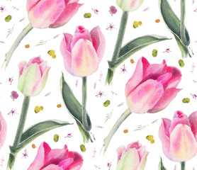 Watercolor flowers. Pink tulips.