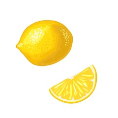Lemon Slice and whole. Vector color flat engraving