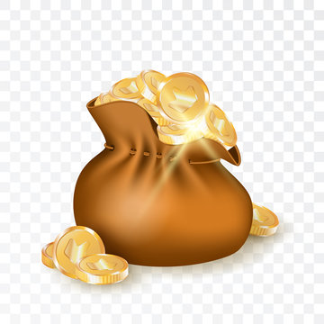 Bag with Golden Coins Vector Illustration