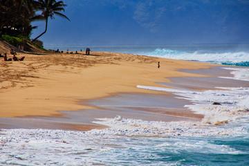 ハワイ・ノースショアの海岸