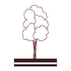 Tree on ground vector illustration graphic design