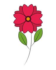 cute flower natural stem leaves image vector illustration