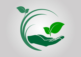 leaf in hand icon