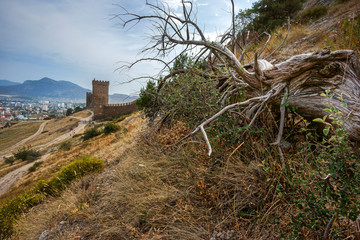 Dry wood lies near the fortress wall in the town of Sudak. Crimean coast. Mountains in the background.