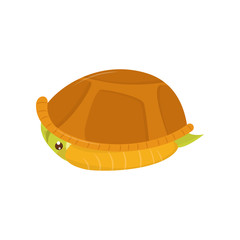 Scared green turtle hiding in its shell. Cartoon character of reptile. Marine animal. Flat vector element for children book