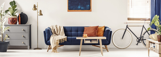 Panorama of a spacious, white living room interior with a retro bicycle standing next to a navy blue couch with orange cushions and blanket. Real photo