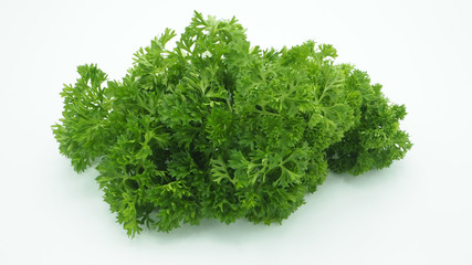 parsley on white back ground.