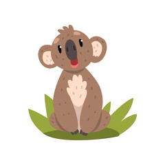 Cute koala bear sitting on the grass, Australian marsupial animal character vector Illustrations on a white background