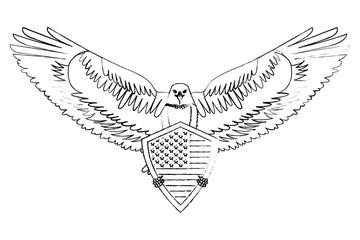 american bald eagle shield vector illustration design