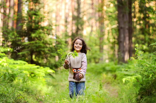 A boy in a sweater with a owl walking in the woods. With a branch of blueberries in hand
