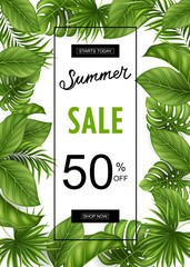 Summer sale banner with tropical leaves for promotion