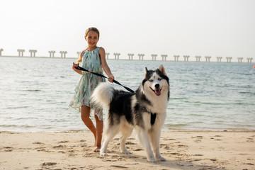 Young girl with Alaskan Malamute on the beach in Dubai
