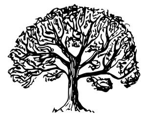 von hand gezeichneter Laubbaum