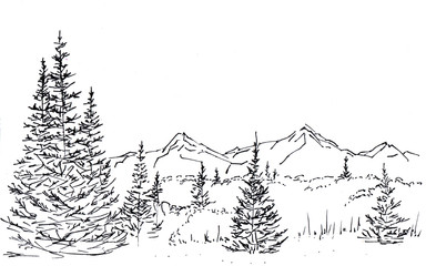 Landscape with a mountain chain and forest. In the foreground there are three tall firs. Hand-drawn linear illustration on paper. Sketch with ink on a white background.
