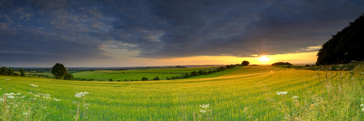 Spectacular clouds and golden sunlight just before a mid-summer sunset over the rolling wheat fields near Cheesefoot Head,  Winchester, UK Wall mural