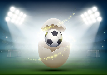 Soccer ball in a chicken egg at the stadium