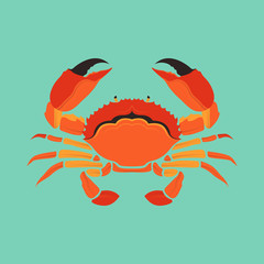 Crab Sea Life animal Vector and Icon for Logo and App