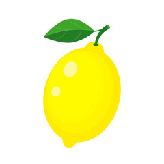 Colorful whole yellow lemon with green leaf. Vector illustration