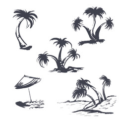 A set of palm trees, a sketch. Vector illustration on white background